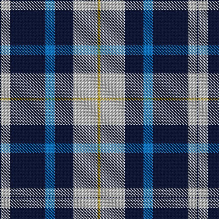 What Is Plaid Q Last Winter The Swing Coat Was All The