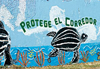 Mural: Protect the Corredor
