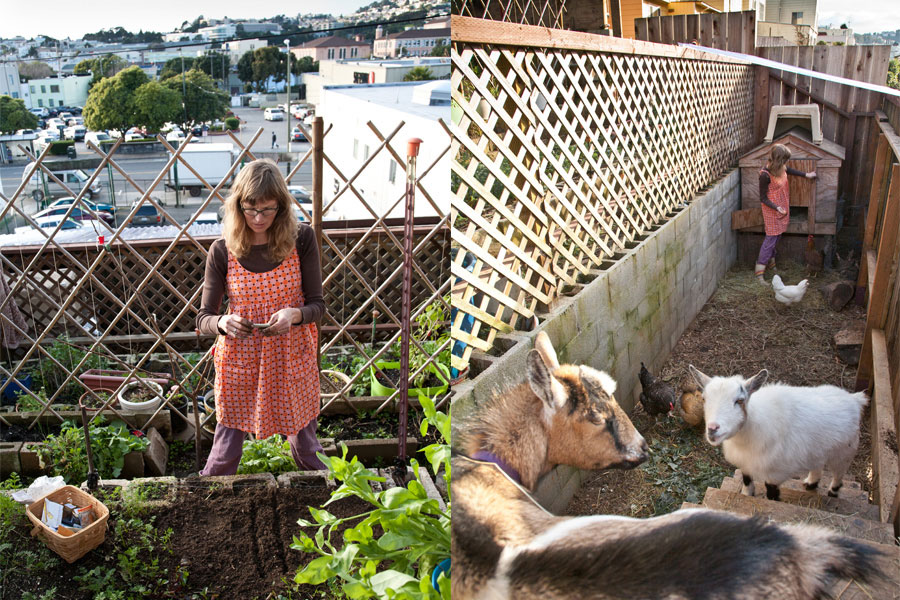... Topography By Constructing A Terraced Farm. Her Two Goats And Four  Chickens Live In An Enclosed Pen On The Bottom Level Of The 25 By 40 Foot  Backyard.