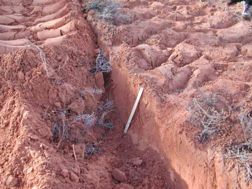 Soil damage from seismic exploration for Soil exploration