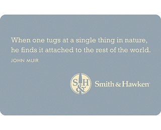 John Muir Misquote When One Tugs At A Single Thing In Nature He