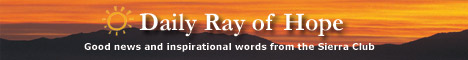 Sign up for Daily Ray of Hope